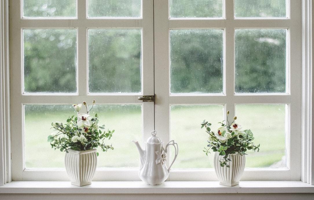 Wit raam met planten